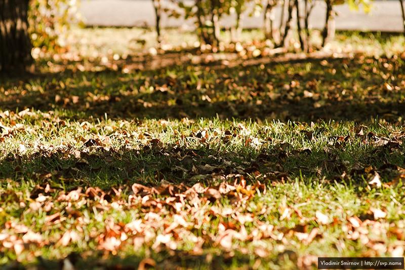 09_autumn_003.jpg