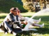 2010.09.23 Свадьба Димы и Юли