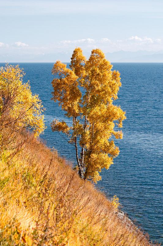 10_autumn_001.jpg