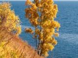 2010.09.30-2010.10.01 Чемпионат России по Альпинизму